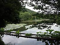 Dvc00594_2